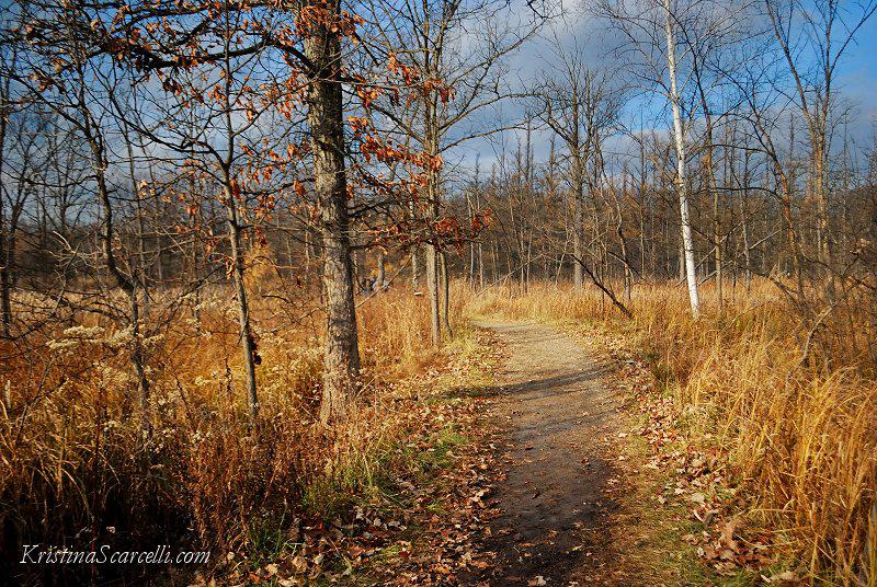 Kensington Aspen Trail