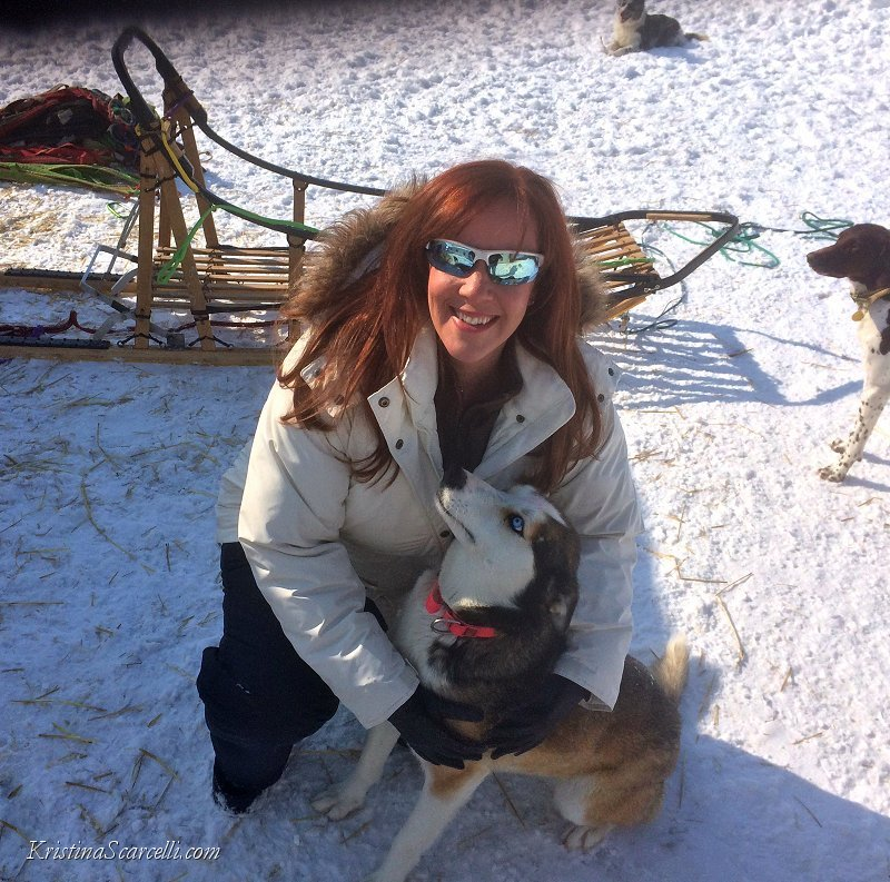 Michigan Dog Sledding Adventure (2)