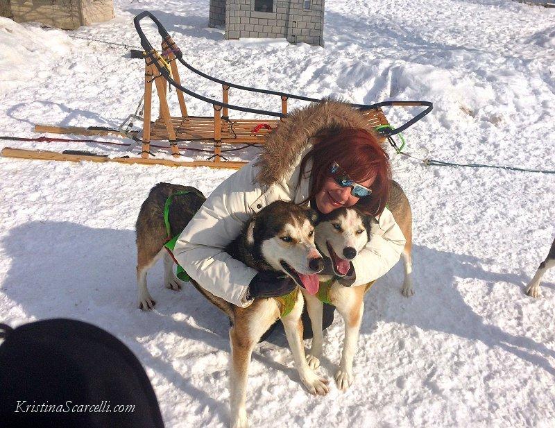Michigan Dog Sledding Adventure (3)